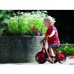 Mini Bike Runner  412